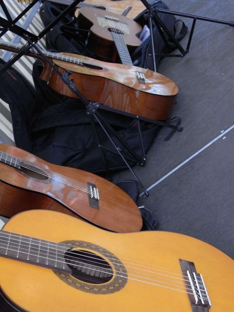 guitare-mjc-pamiers