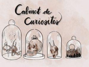 «Cabinet de curiosités» d'Anthéa